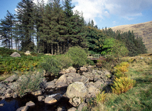 glen afton picture photographs glens in scotland